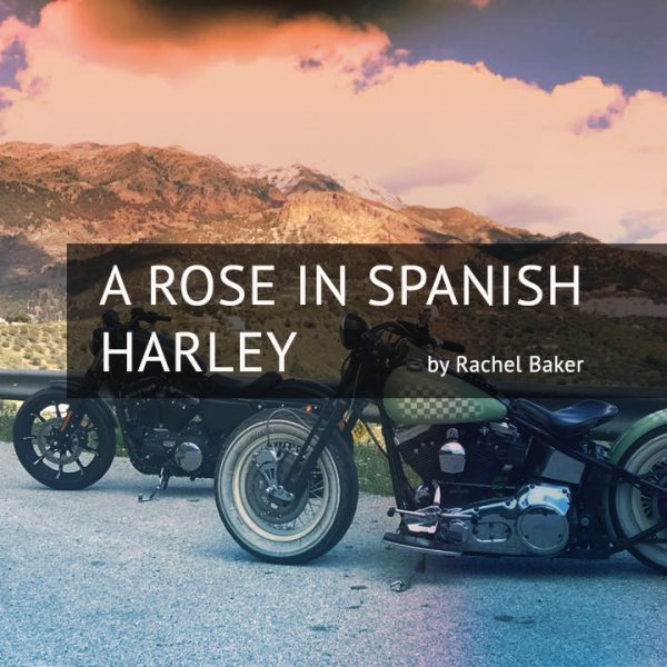 RACHEL BAKER A Rose in Spanish Harley